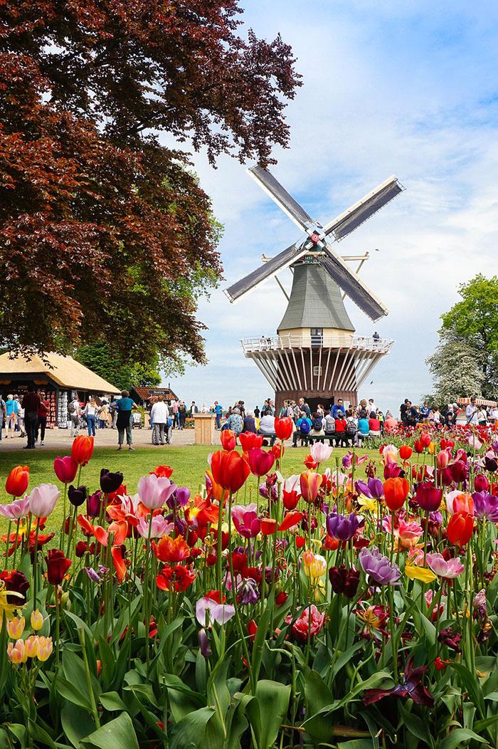 Proljeće u Amsterdamu grad oblači u najlaskavije ruho