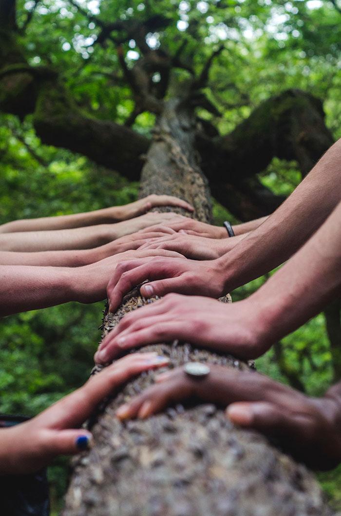 Za povezivanje s prirodom (i samim sobom), nema boljeg razdoblja od proljeća