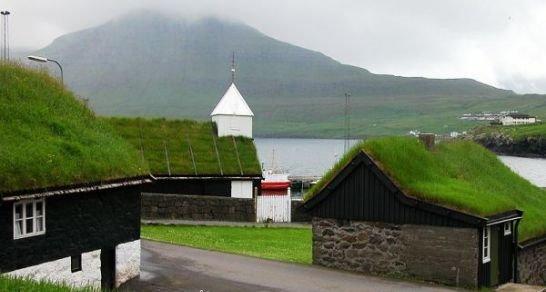 Zeleni krovovi za zdravije gradove