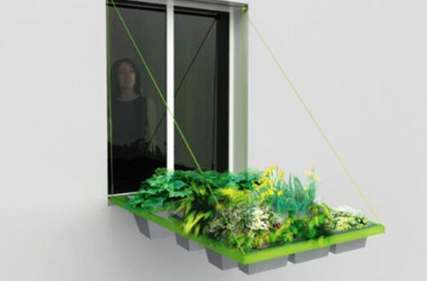 Zeleni vrt u prozorskom okviru