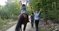 Don Kihot poziva na susret s konjima
