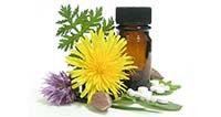 Studirajte homeopatiju s Georgeom Vithoulkasom