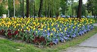 Floraart 2013. - opet u srcu Zagreba