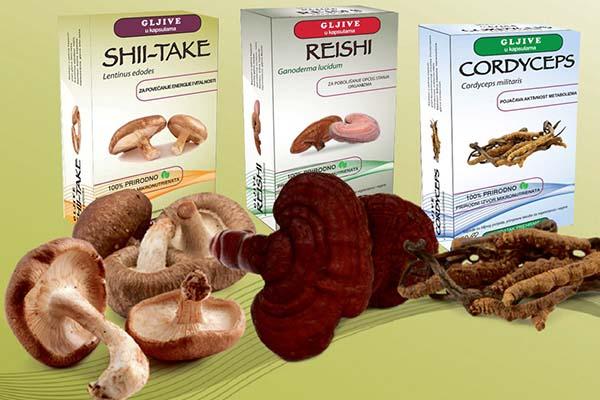 Ljekovite gljive – znanost i tradicija ruku pod ruku