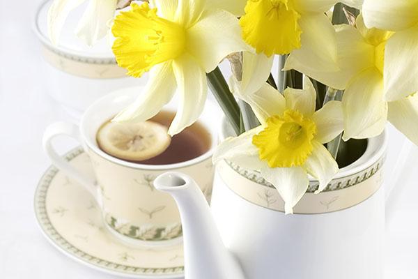 Šalica čaja – pomoć nakon zahvata konizacije