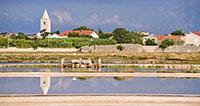 Proslava drugog rođendana Muzeja soli uz obilazak polja soli