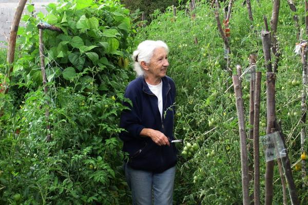 O vrtlarenju i izgubljenim vještinama