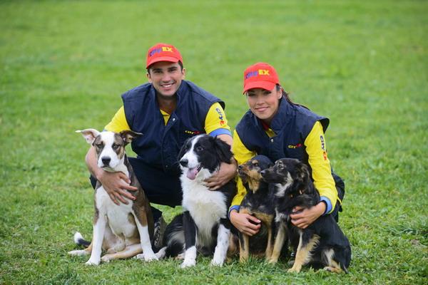 Azil Dumovec posjetili poštari koje psi vole