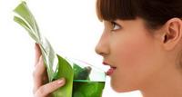 Predavanje dr.sc. Stribora Markovića: Ljekovite biljke za dišni sustav