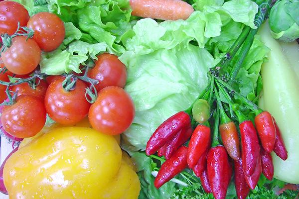 Malim koracima do organskog uzgoja vlastite hrane
