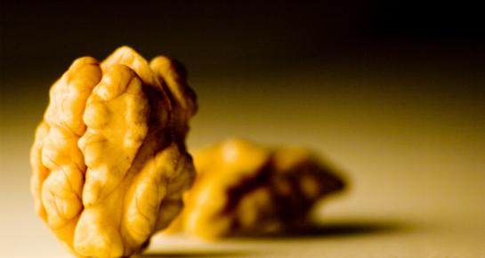 Hrana za mozak poboljšava koncentraciju