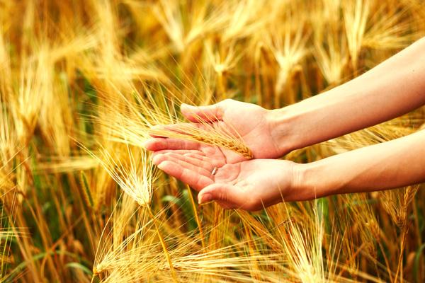 Alergije kao odgovor organizma na zagađeni okoliš