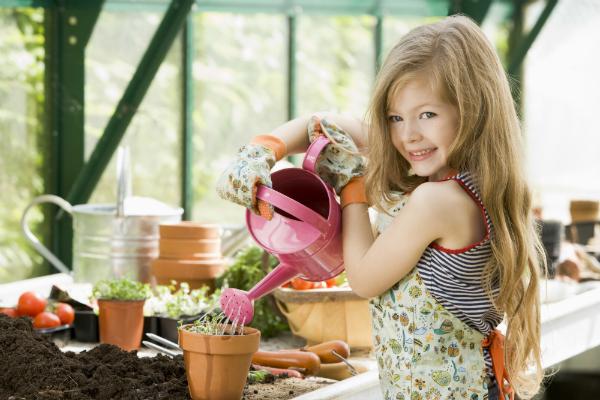 Osnovna načela biološkog uzgoja povrća