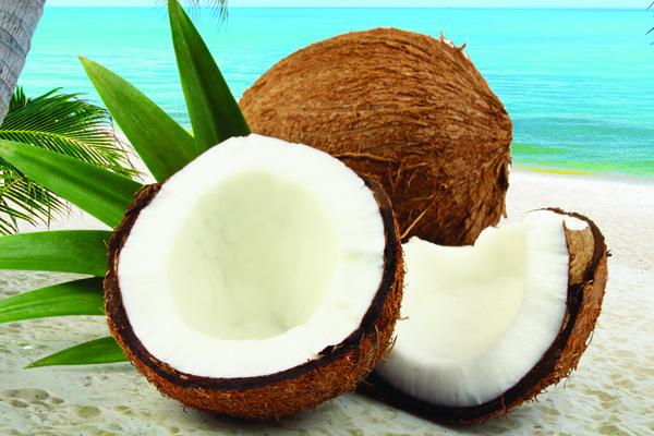Novo na tržištu - Encian šećer kokosove palme