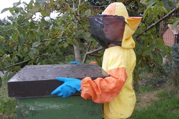 Matija Jerman - najmlađi pčelar u Hrvatskoj