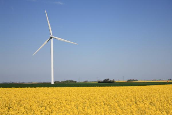 Hrvatsku pogoni 995 elektrana na obnovljive izvore energije