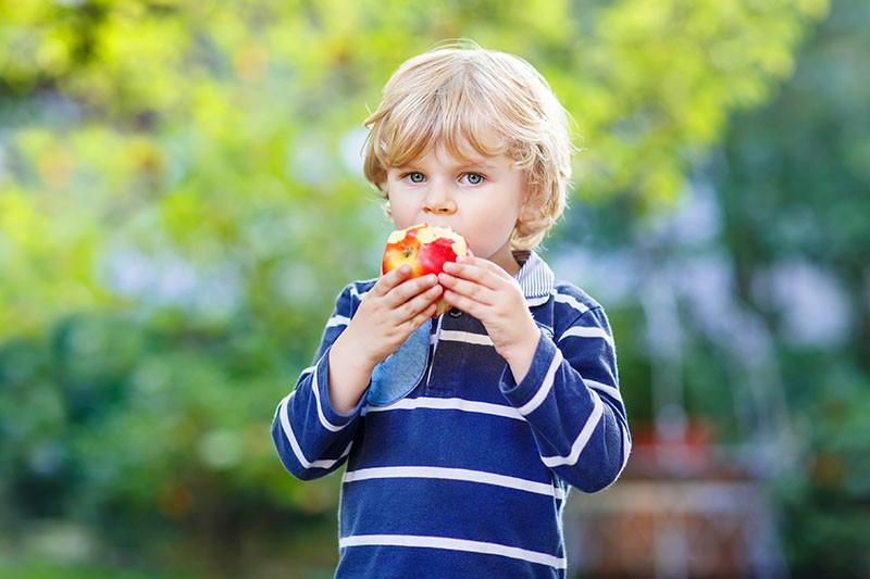 Pravilne prehrambene navike razvijaju se od malih nogu