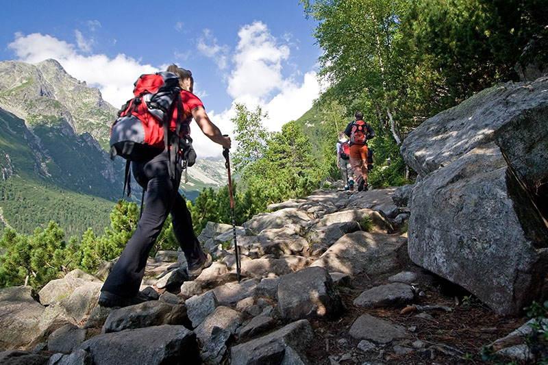 Nordijsko hodanje za zdravlje i fit formu