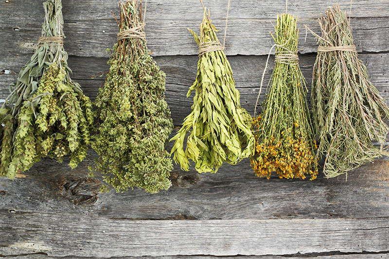 Mirisni dimovi - napravite sami biljne svežnjiće za zadimljavanje