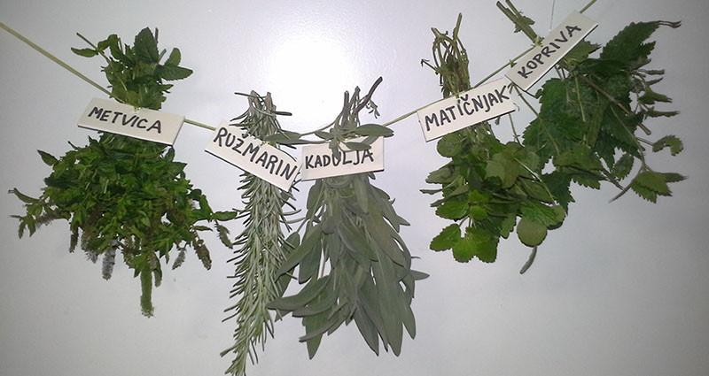 Tri travke - tradicionalni lijek