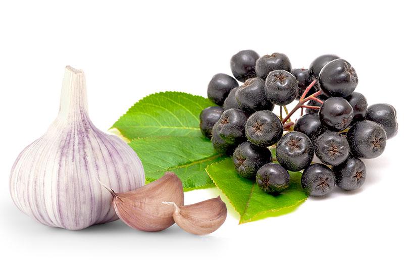 Aronija i češnjak - dobitna kombinacija za zdravlje krvnih žila