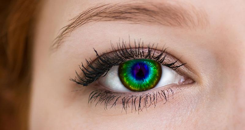 Leće u boji: kako ih