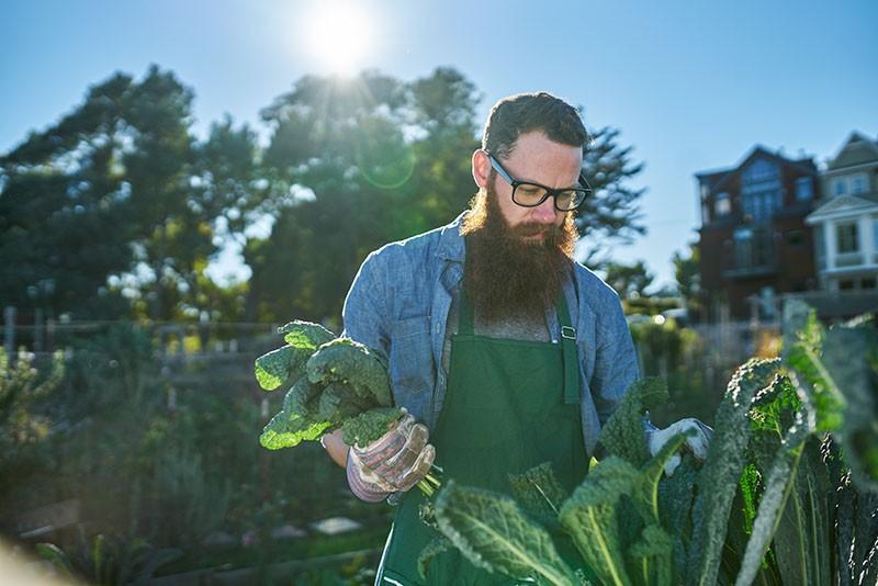 Urbani vrtovi - korisni za zdravlje, korisni za okoliš