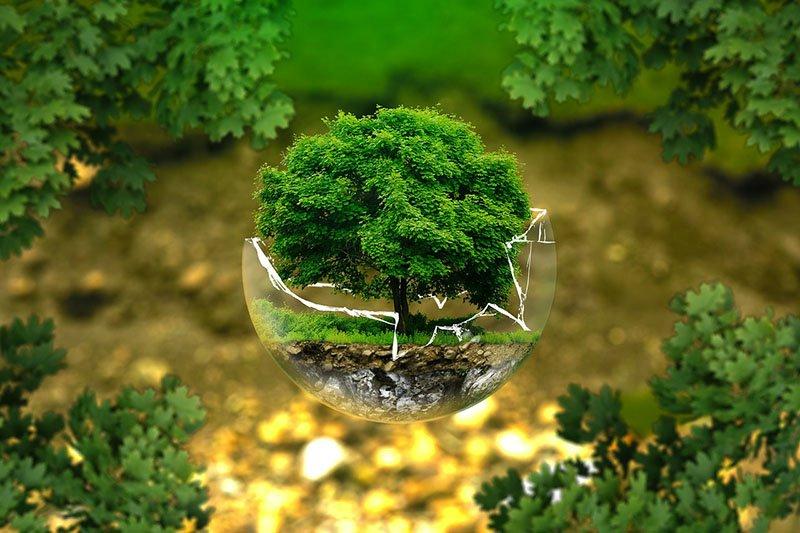 ZELENO JE IN: 8 jednostavnih načina kojima Ti možeš spasiti planet