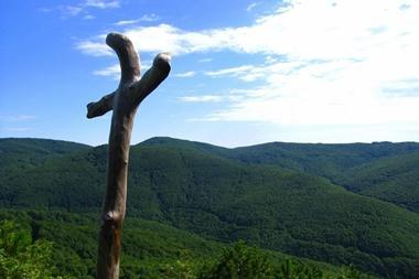 Pet oaza u Slavoniji za aktivni odmor