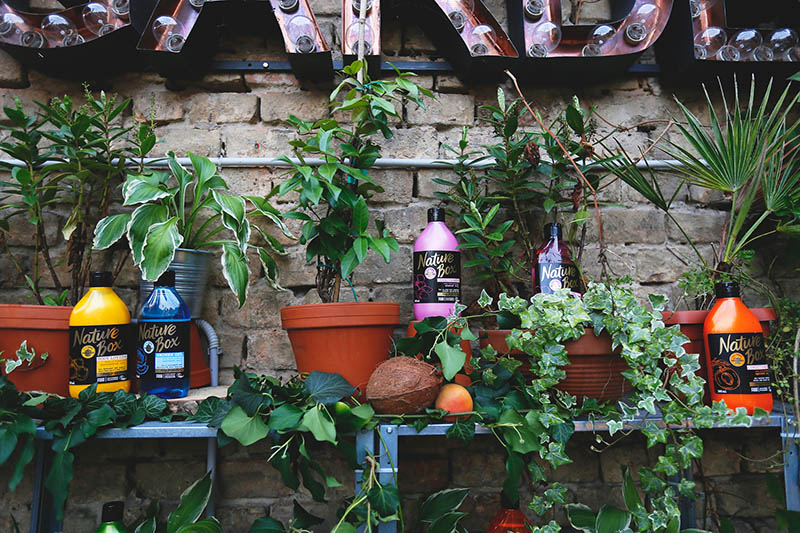 Nature Box: Nova generacija beauty proizvoda sa 100 % hladno prešanim uljima