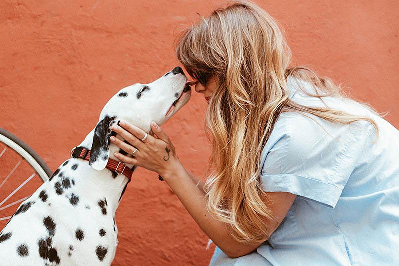 Za bolje raspoloženje i brisanje stresa, igrajte se s kućnim ljubimcima
