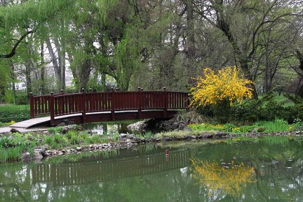 Jeste li ikada posjetili botanički vrt?