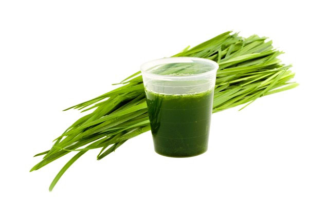 Liquid sun - zelena superhrana
