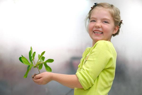 Zelena ekonomija – utopija ili budućnost?
