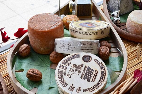 Bordeaux, Francuska – putevima vina i sira (2. dio)