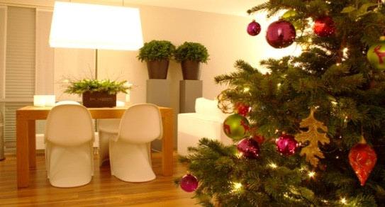 Zeleni Božić u vašem domu