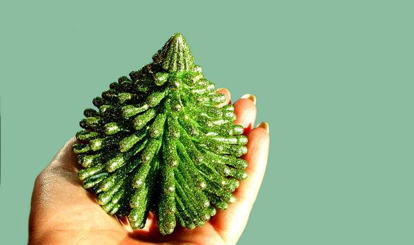 Kakvo božićno drvce odabrati?