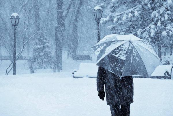 Fitoterapija i zimske depresije