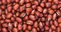 Azuki grah idealan za proljetnu detoksikaciju