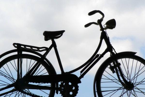 Danski kotači