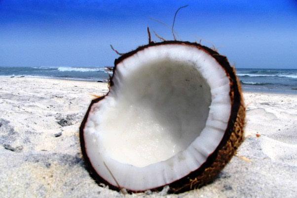 Ljekovito kokosovo ulje