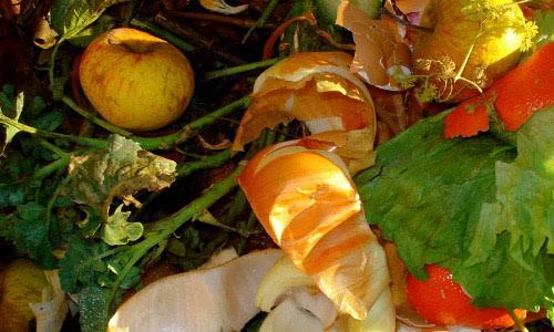 Iskoristite trulo voće i povrće