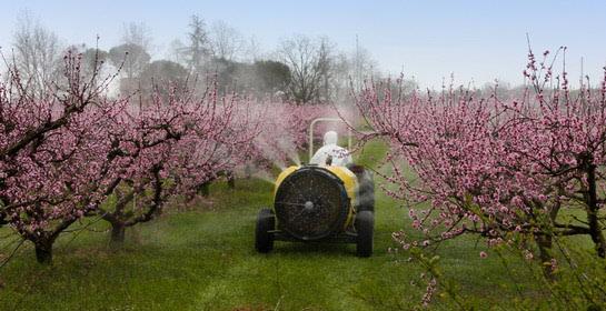 Do pesticida u Hrvatskoj bez ikakvih papira