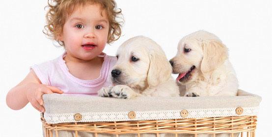 Dijete i pas u istom stanu?