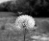 Ljetna vitkost - izvucite najbolje iz ljeta- komentira kata88