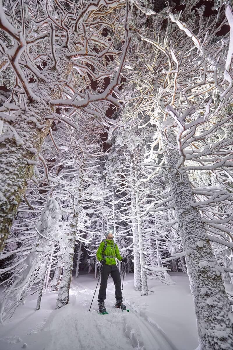 Web mjesta za upoznavanje snijega